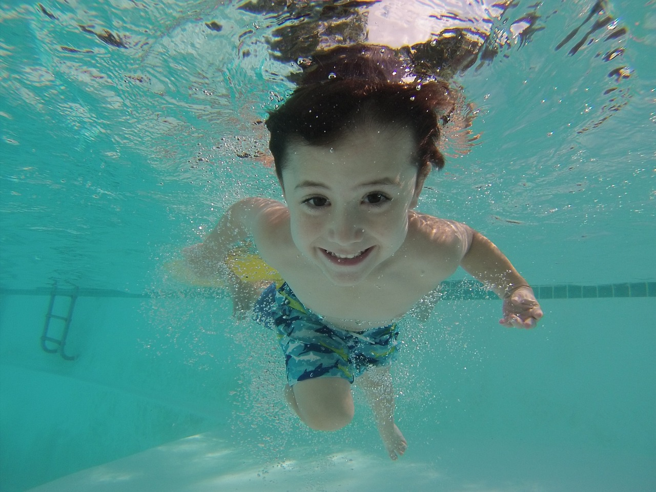 How to Avoid Accumulating Water Bugs in your Pool